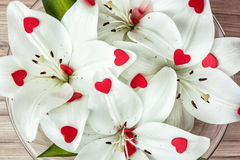 White lilies with more little red hearts in the glass bowl, Vale Stock Photos