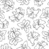 White lilies. Seamless pattern Royalty Free Stock Photography