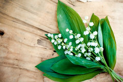 White lilies of the valley on vintage wooden background Royalty Free Stock Photography