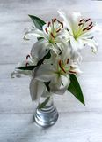 White lilies in a vase and on the floor royalty free stock image
