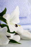 White lillies and blue towels  by the water Royalty Free Stock Images