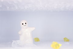 The white lilliputian  smile in the snow and ice. The little white lilliputian  smile in the snow and ice Royalty Free Stock Photos