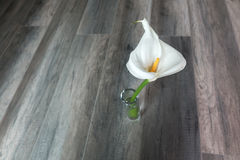 White lilly. On a wooden background Royalty Free Stock Image