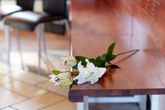 White lily on bench at funeral in church Royalty Free Stock Images