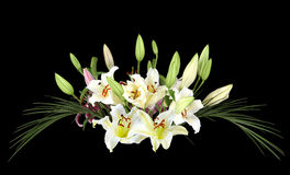 White Lily Bouquet Royalty Free Stock Photography