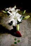 white lily bukiet. Zdjęcie Royalty Free