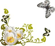 White lily corner and butterflies Royalty Free Stock Photography