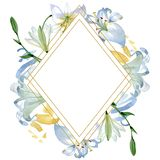White lily floral botanical flowers. Watercolor background illustration set. Frame border ornament square. vector illustration