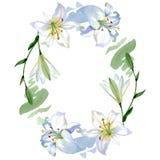 White lily floral botanical flowers. Watercolor background illustration set. Frame border ornament square. White lily floral botanical flowers. Wild spring leaf stock photography