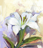 White lily flower.Flower oil painting Royalty Free Stock Photo