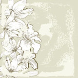 White lily flowers. Retro stylized baskground with white lily flowers Royalty Free Stock Images