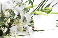 White lily flowers and post card Royalty Free Stock Photography