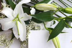 White lily flowers and post card Stock Image