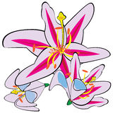 White lily isolated on white vector illustration
