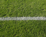 White line on grass Stock Images