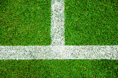 White line on the green soccer field Stock Photo