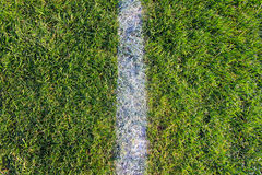 White line on green soccer field background. White line on green football field background Royalty Free Stock Image