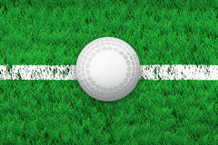 White line and hockey ball on Sport grass field Royalty Free Stock Images