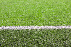 White line on a soccer field grass Stock Image