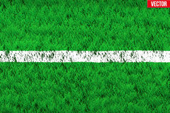 White line on Sport grass field Stock Photos