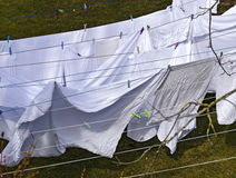 White linen drying on clotheslines Royalty Free Stock Photography