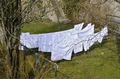 White linen drying on clotheslines Stock Photo