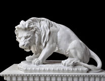 White lion statue. On black background Royalty Free Stock Image