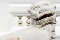 White lion statues Stock Photos