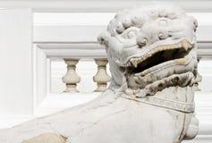 White lion statues Stock Photos