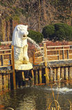 White lion statues spewing water. Stock Photography