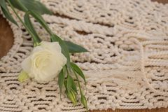 White lisianthus placed on macrame wall art. Shot with shallow depth of field and copy space Royalty Free Stock Photos
