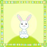 White little rabbit Royalty Free Stock Photo