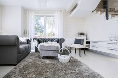 White living room with grey sofas Stock Image