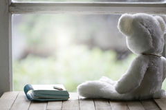 White lonely Bear and notebook at windows Stock Image