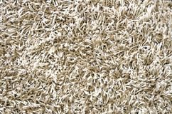 White long hair carpet texture Royalty Free Stock Photos