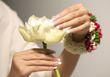 White lotus flower. Nice hands with nail art Royalty Free Stock Photo