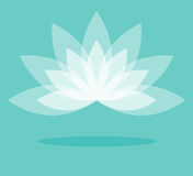White lotus flower vector on color light background Royalty Free Stock Image