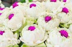 White lotus and Glob-Amaranth Comoran flower Royalty Free Stock Photo