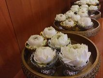 White lotus pray for buddha in the bowl. Thai Culture Stock Photo