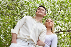 White love stock images
