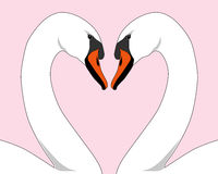 Free White Love Swans Royalty Free Stock Photo - 399215