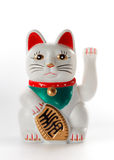 White lucky cat, Maneki-neko. On white background stock photo