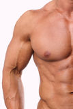 White male torso Stock Photo