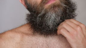 White Man Taking Care of his Lush Beard and stock video