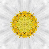 White Mandala Flower. Concentric Kalaidoscope Design Stock Photography