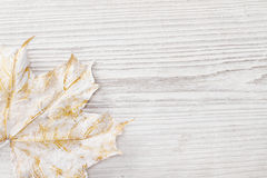 White maple leaf, wooden background Royalty Free Stock Photography
