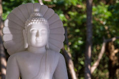 White marble Buddha in a temple Thailand. White marble Buddha in a temple Thailand Stock Photography
