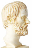 White marble bust of the greek philosopher Aristotle Royalty Free Stock Photos