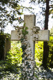 White marble cross on grave. Stock Image