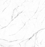 White marble natural stone texture Stock Images